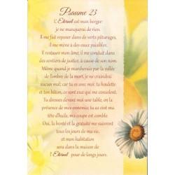 Carte Double + Env - Psaume 23